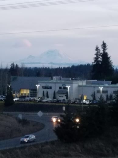 Caught a glimpse of Mt. Rainier!